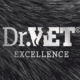 DrVet Group