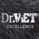 DrVet Group