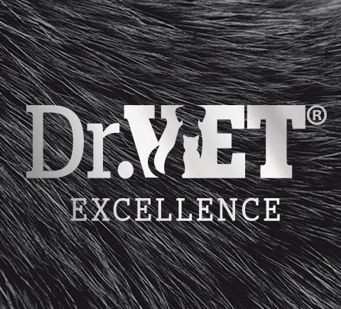 prikaz logo dizajna za DR Vet. suplementi za pse