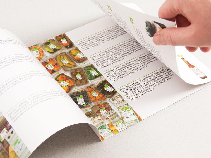 Dizajn Kataloga Jovanjica