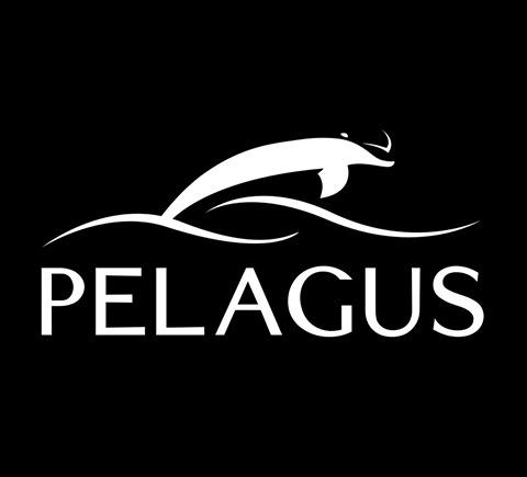 logo dizajn za brend pelagus